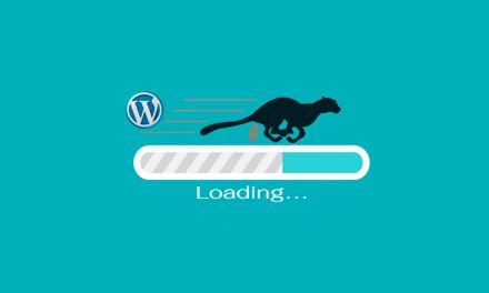 Los mejores plugins para optimizar WordPress y algún consejo.