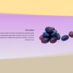 Un vistazo a los nuevos separadores entre secciones de Divi y un tutorial práctico